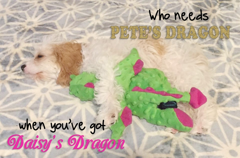 Pete's Dragon Nashville Dog Toy 2